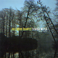 WOOD, Juli Quartet: Synkkä metsä (Dark Forest)