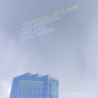 ANDERSON, Reid / Dave King / Craig Taborn: Golden Valley Is Now